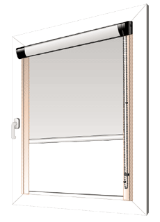 rollo transparent stunning rollo transparent with rollo transparent free rollo rollo. Black Bedroom Furniture Sets. Home Design Ideas